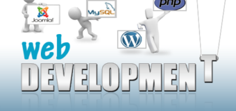 Main Five Reasons to Hire a Professional Web Development Company in Newcastle