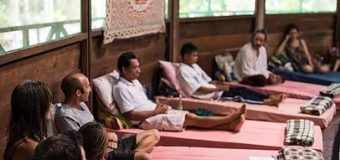 Learn and experience: Participate in the diversity of ayahuasca ceremonies